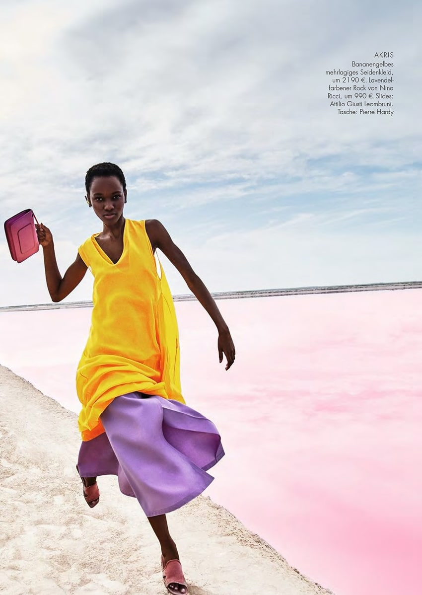 "Herieth Paul Shows Off ""Hockney Pastels"" for ELLE Germany February 2018"
